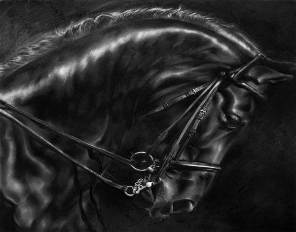 Robert Longo  Study of Stallion's Arc, 2013  Signed and dated on the reverse  Ink and charcoal on vellum  40 x 50 cm