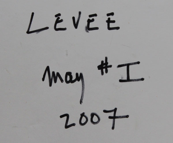 levee2007 may1 65x50dosh